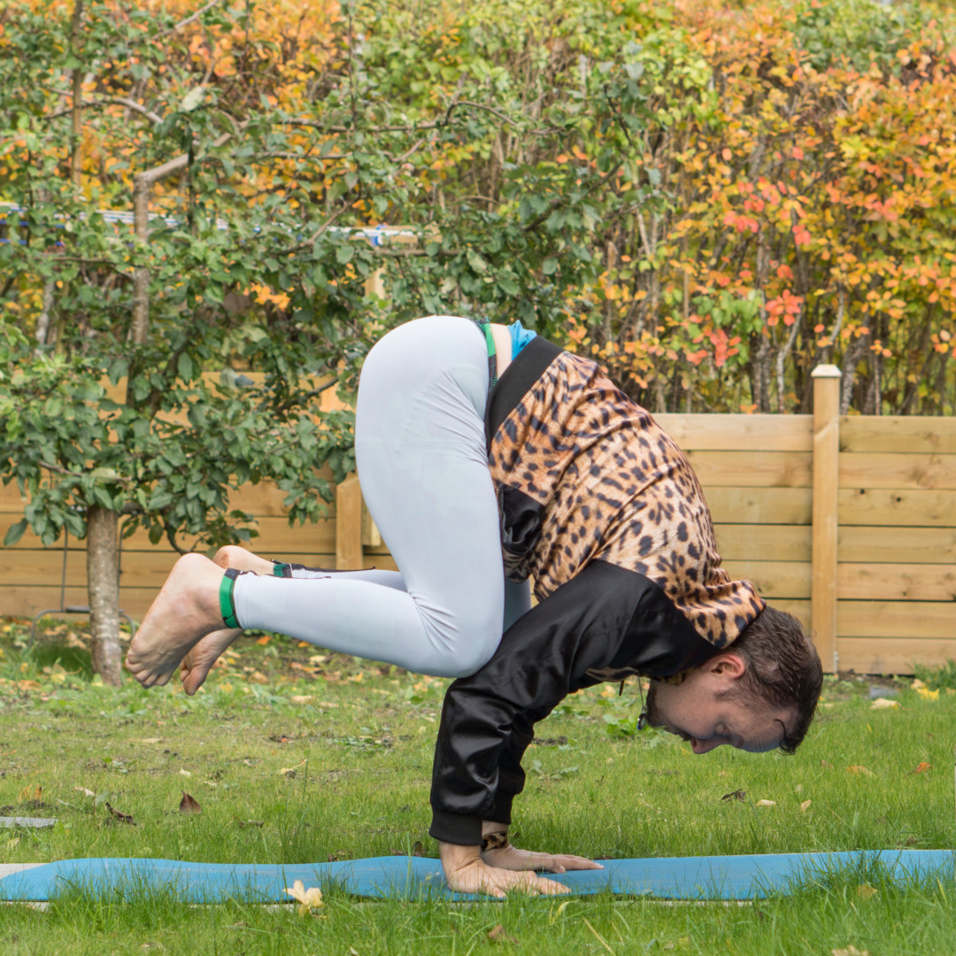 Crow pose in October 10th 2017. I bring a  Crowpose as well as a  Flyingcrowpose. Starting to be able to hold the later one too for a few breaths now :)