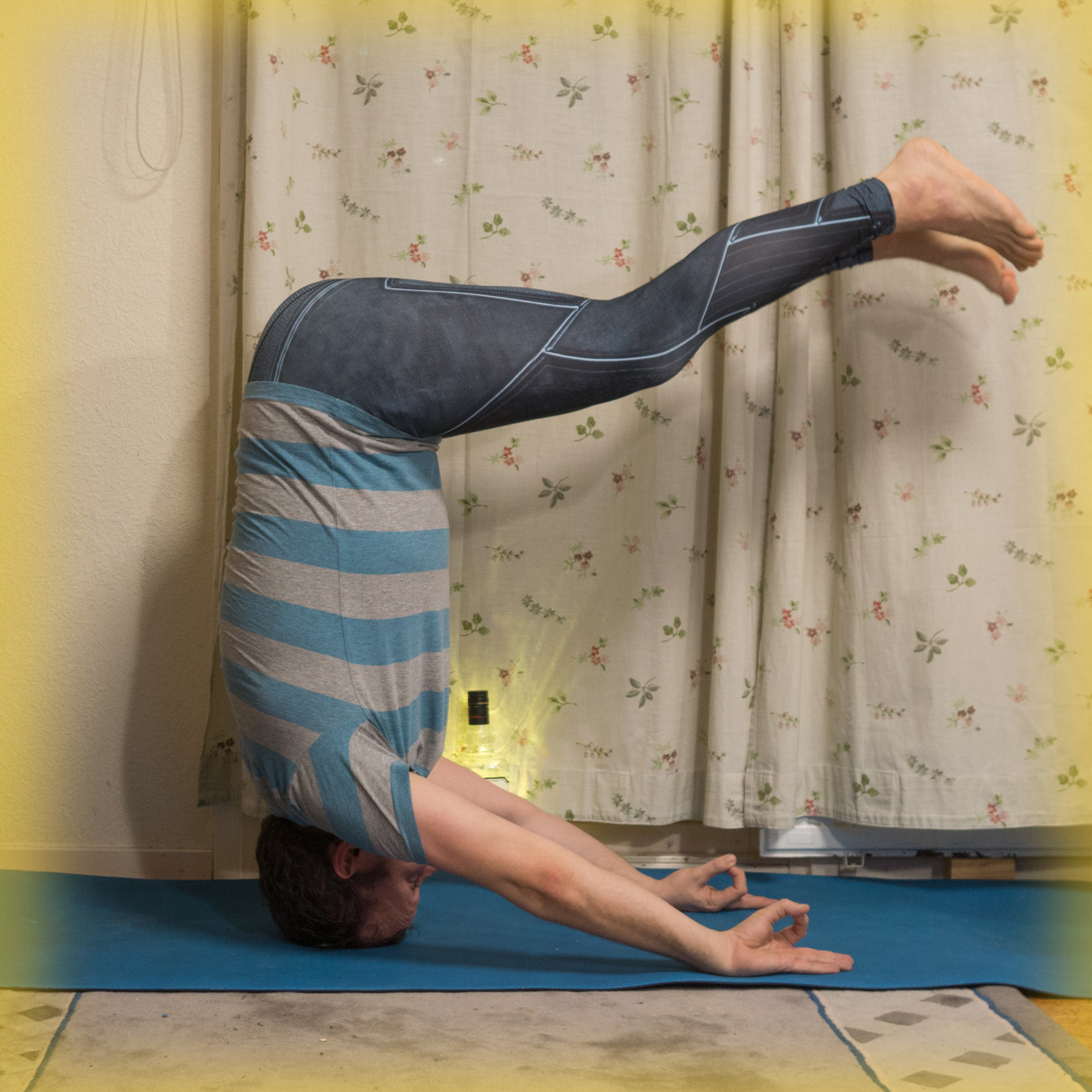 Mukta Hasta Sirsasana B in November 16th 2017. Today, I show my gratitude for knowledge. A equals A, vaccines work, we've been to the moon, global warming is real, chemtrails aren't real, univ