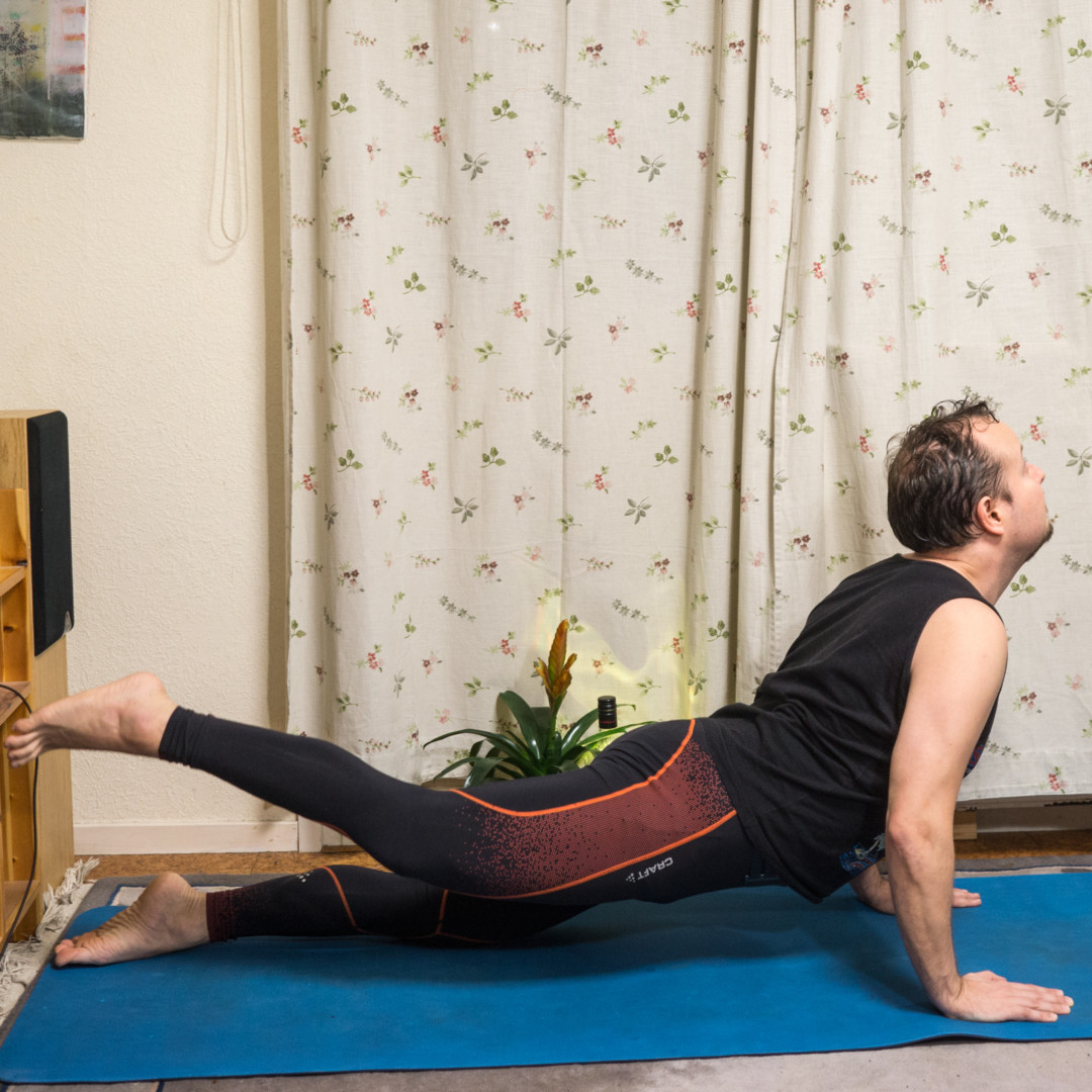 Cobra pose in November 19th 2017. Today I am grateful for confidence. Confidence should not be confused with ego, even if they might agree betimes. When you nail that perfect pose, with great
