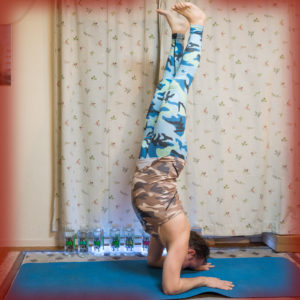 Forearm stand in December 10th 2017. I go for  Pincha Mayurasana, although I always start my pinchas from dolphin so technically it's both :)