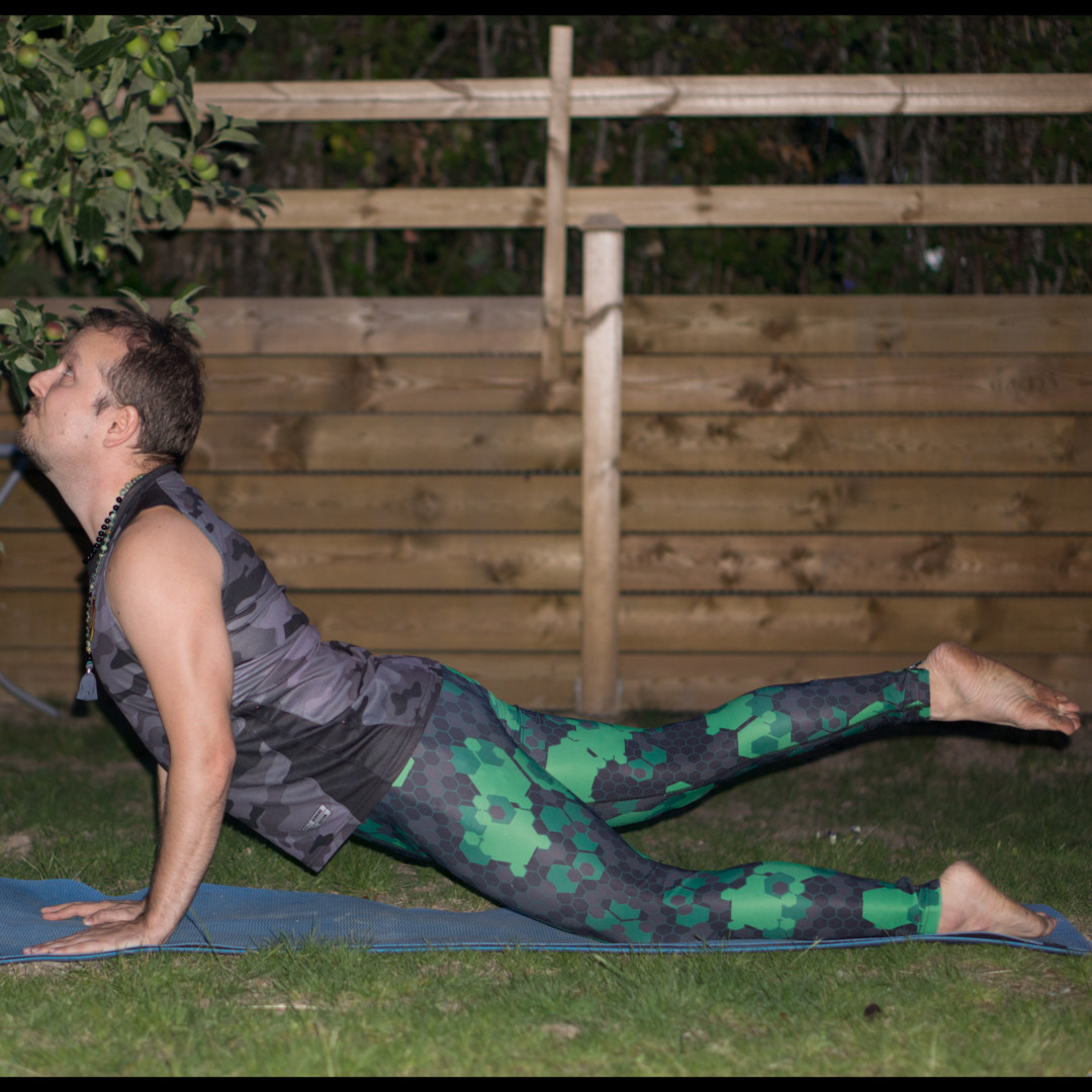 Cobra pose in June 24th 2018. One of my favorite glutes strengtheners is  Cobrapose or  Bhujangasana, with one leg up. A strong butt is the difference between bouncing up and keep going vs a p
