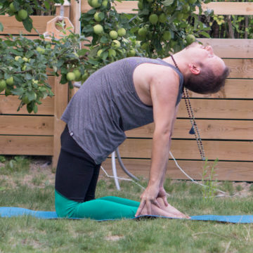 Camel pose in July 19th 2018. Openyourheart with the Ustrasana or Camel Pose. Targets the Anahata or Heartchakra. A good preparation for any backbend.