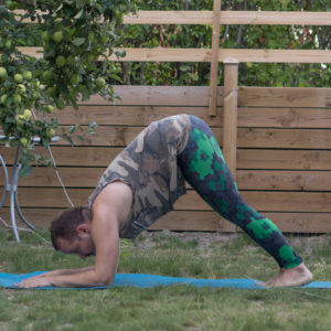 Dolphin pose in July 18th 2018. I'm ending this humpday with  Ardha Pincha Mayurasana or  Dolphinpose. This is an important preparation pose for pincha, and also the most common pose to launch into pincha.