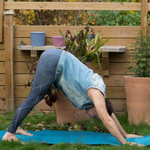 Downward Facing Dog in October 15th 2018. Yay, a fifth season of Invert Or Bend, I wish the producers of Helix and Survivors had that continuity.