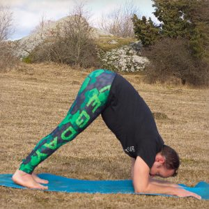 Dolphin pose in March 10th 2019.  Dolphinpose or  Ardha Pincha Mayurasana is a great preparation for pincha, helps with text neck and activates the thirdeye chakra. And it's also a good stretc