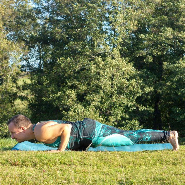 Chaturanga in October 1st 2019. Yay, I'm in here! I go for my favorite pose in the plank family, the Chaturanga Dandasana. One regular, and two with raised leg.