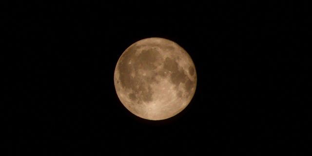 Beaver Moon i November 2019